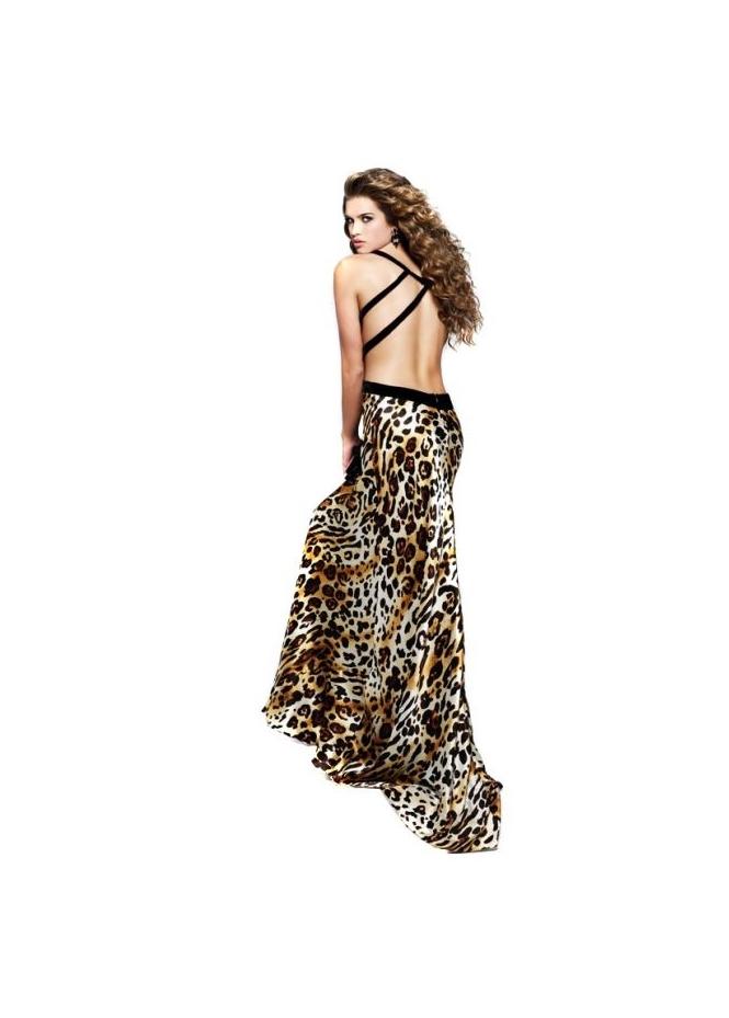 Celebrity Evening Dresses, for sale, fashionable dress