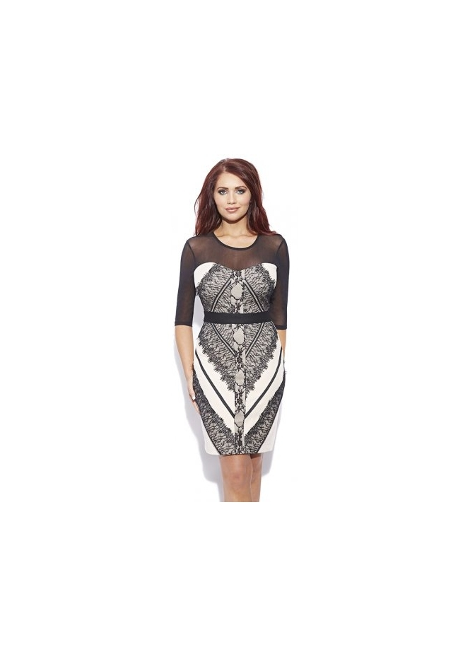 Amy Childs Helen Dress With Mesh Sleeves & Lace Panels
