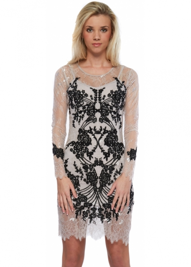 For Love & Lemons Lacey Dreams Long Sleeve Mini Dress In Dove Grey