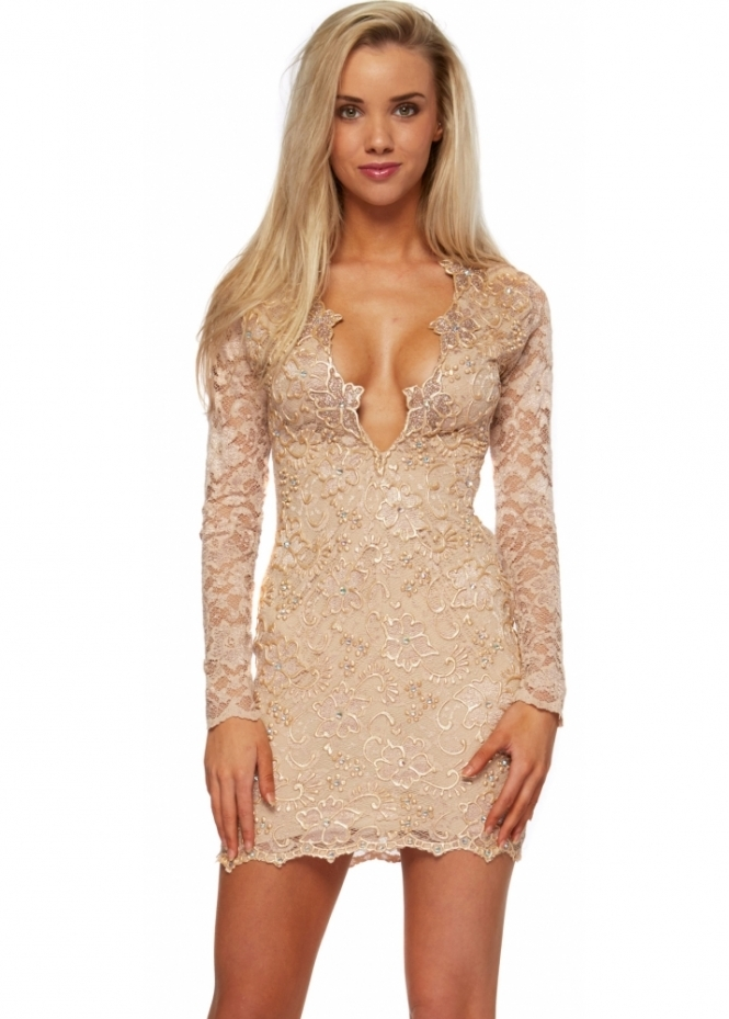 Holt Eli Dress In Nude & Champagne Gold Painted Lace