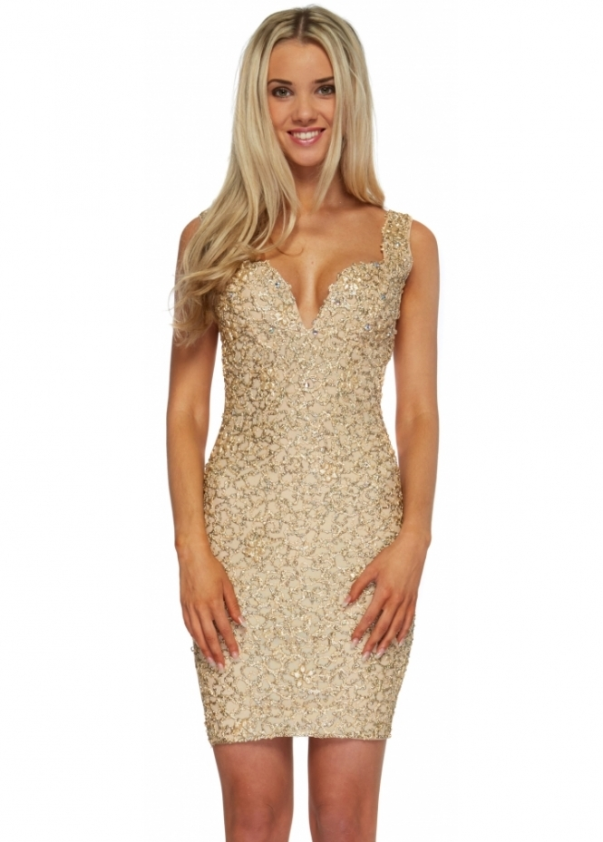 Holt Avianna Dress In Nude Gold Painted Bodycon Dress