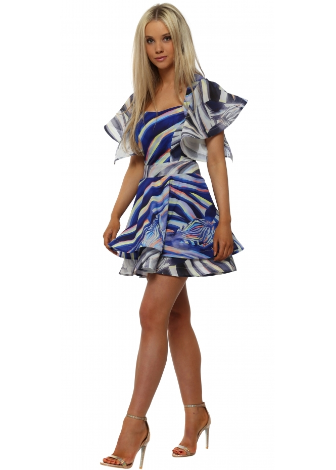 Rebecca Rhoades Ruby Zebra Dreams Structured Swing Dress