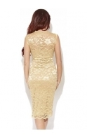 Millie Gold Lace Midi Pencil Dress