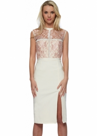 Tempest Lola Blossom Lace Pencil Dress