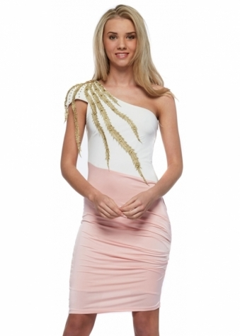 Pink One Shoulder Dress With Sequinned Gold Leaves