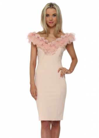 Poppy Organza Flower Pencil Dress In Nude