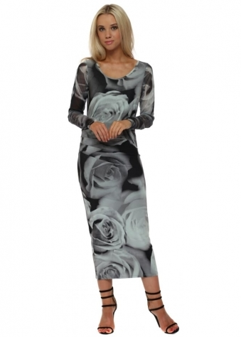 Pia Photo Rose Silt Chiffon Sleeve Midi Dress