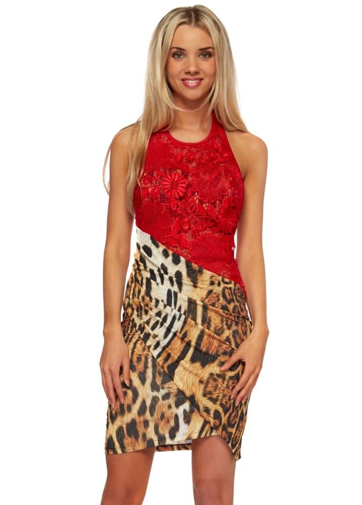 2e7b44708519 Leopard Print Mini Dress With Red Lace Halterneck Bodice